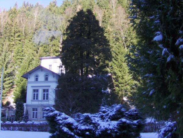 zima16_4.jpg