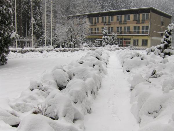 zima16_1.jpg