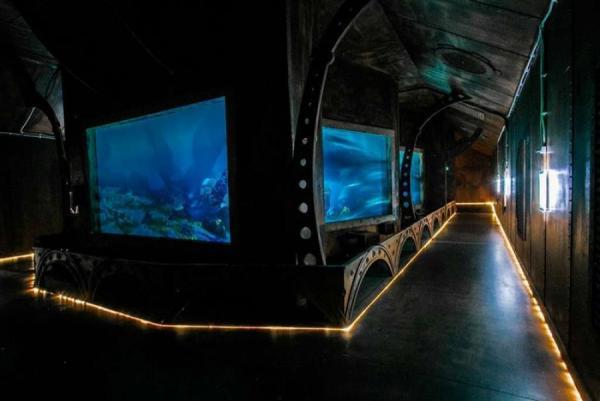 oceanarium (Copy).jpg